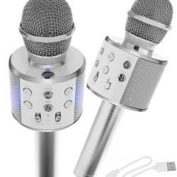Mikrofons Karaoke Silver (8997)